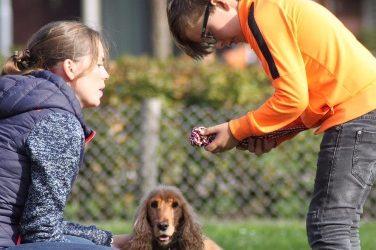Weerbaarheidstraining met hond als co-coach